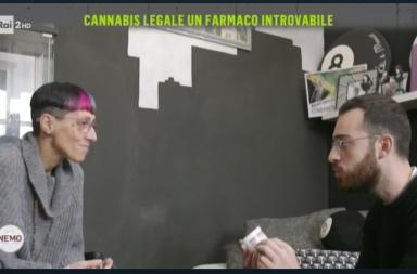 Nemo sulla cannabis terapeutica