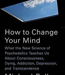 "Copertina ""How to change your mind"""