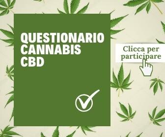 questionario cannabis