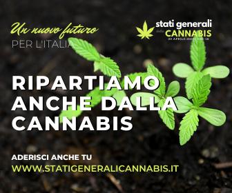 stati generali della cannabis