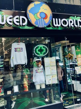 cannabis new york