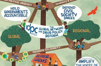 idpc strategic plan