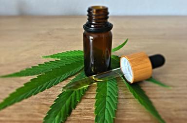 cannabis medica cbd thc