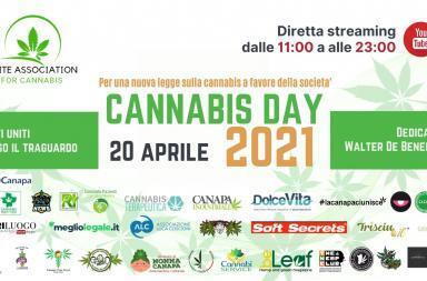 420 cannabis day