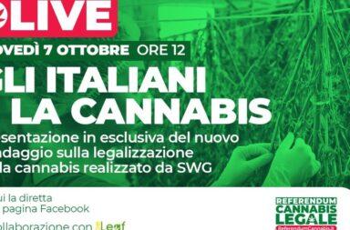 sondaggio cannabis